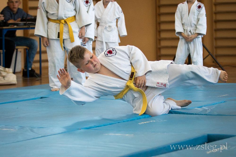 Przegladasz: Judo w Łęgu.