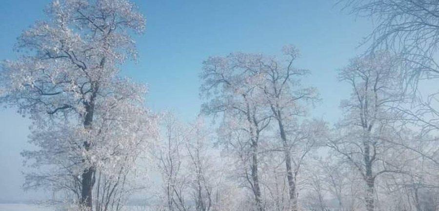 Przegladasz: Zima wokół nas.